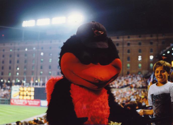 The Oriole Bird - The Orioles Mascot